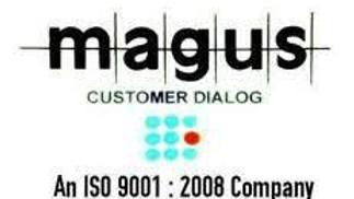 IT Executive at Magus Customer Dialog !