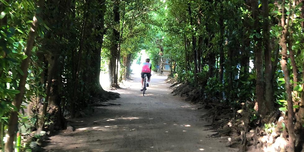 Motobu クリーンサイクリング