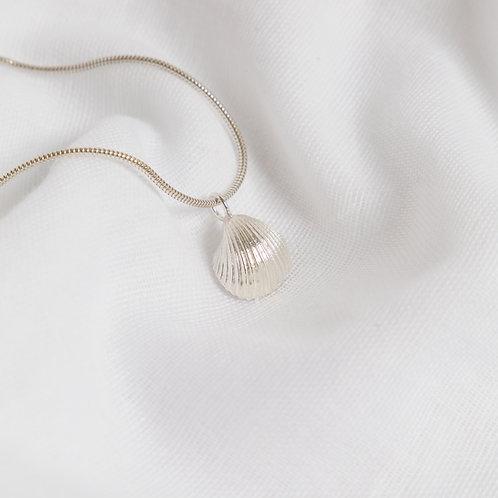 Cockle Shell Bracelet