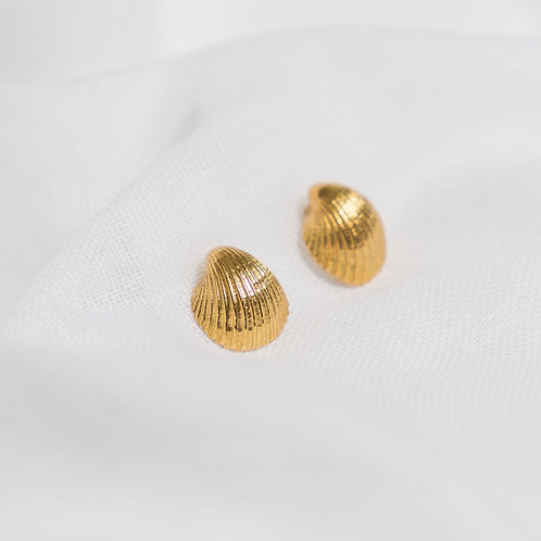 Gold Cockleshell Studs