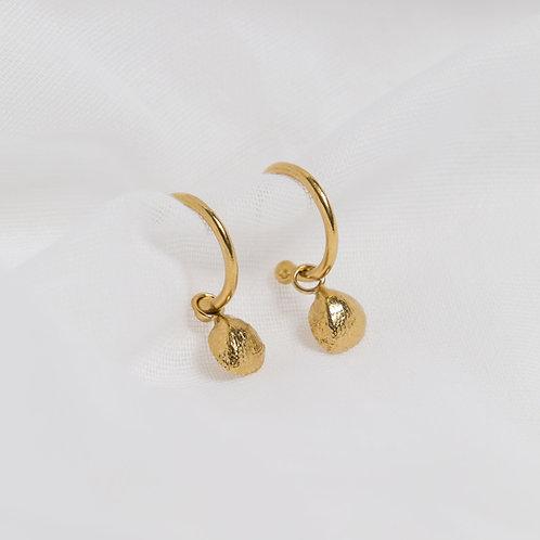 Gold Tiny Cockleshell Charm Hoops