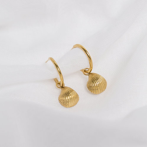 Gold Cockle Shell Charm Hoops