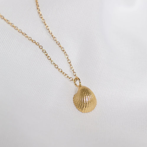 Gold Small Cockleshell Necklace