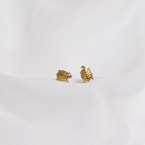 Gold Baby Turtle Studs