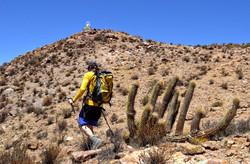 hiker on Surunche - Putre