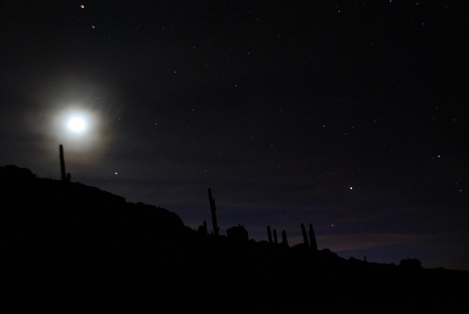 pleine lune su l'île au cactus