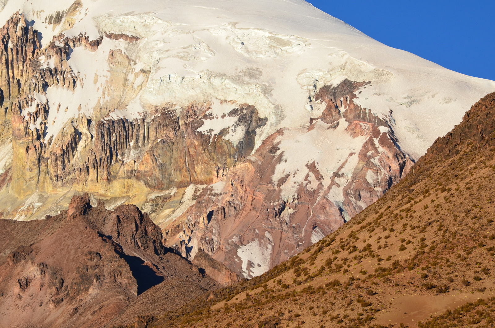close up Sajama