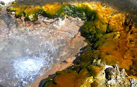 geysers Sajama National Park