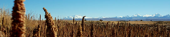sommets de 6000m, Bolivie, expé, alpinisme, andinisme