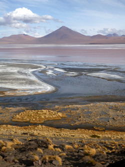 Laguna Colorada & the volcano