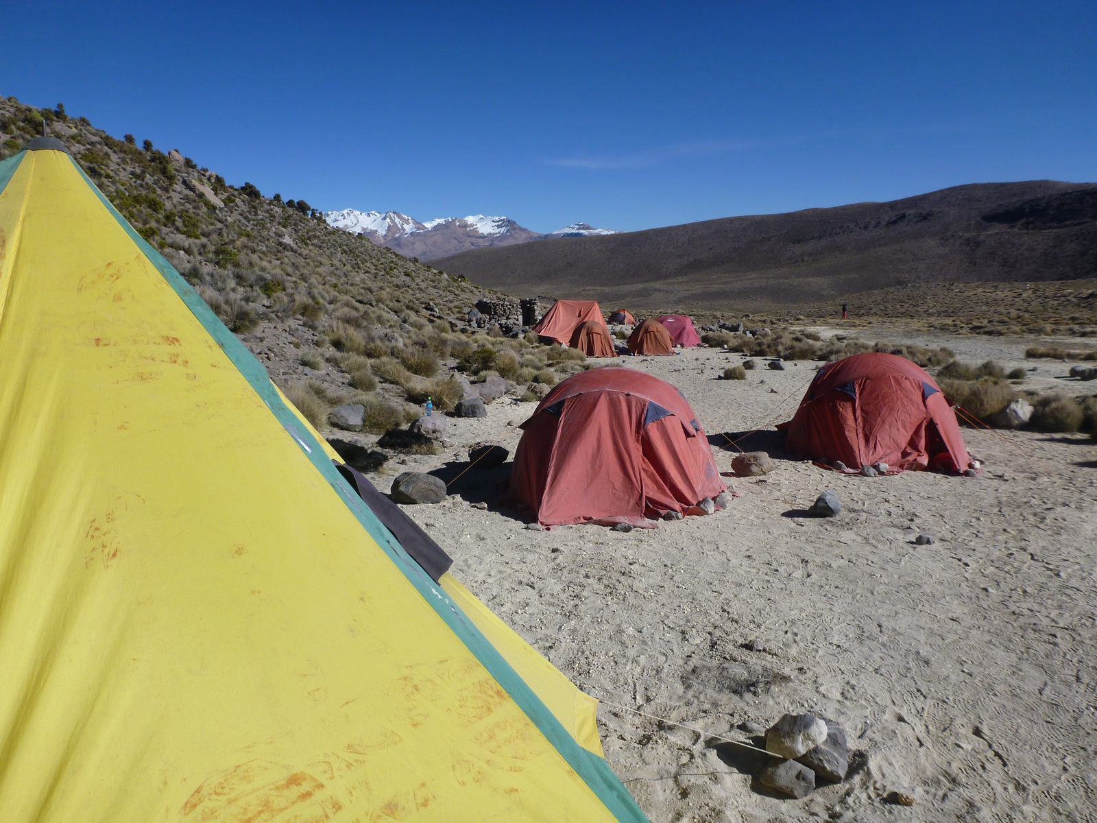 Base camp Sajama