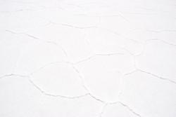 polygones on the dry salt flat