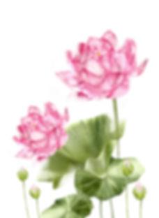 example 2.jpg