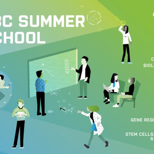 Medical Summer Schools& More | MedEvents
