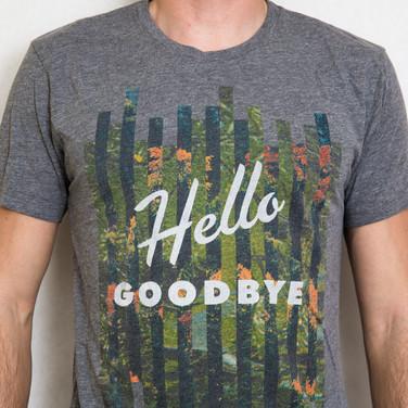 Hellogoodbye