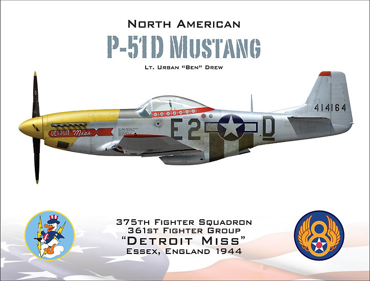 "P-51D Mustang ""Detroit Miss"""