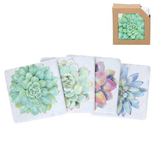Gisela Graham Succulents Resin Coasters Pack of 4