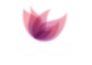 LogoSplendore_Branco_Pequeno.png