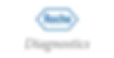 Roche-Diagnostics-Schweiz-AG-1.png