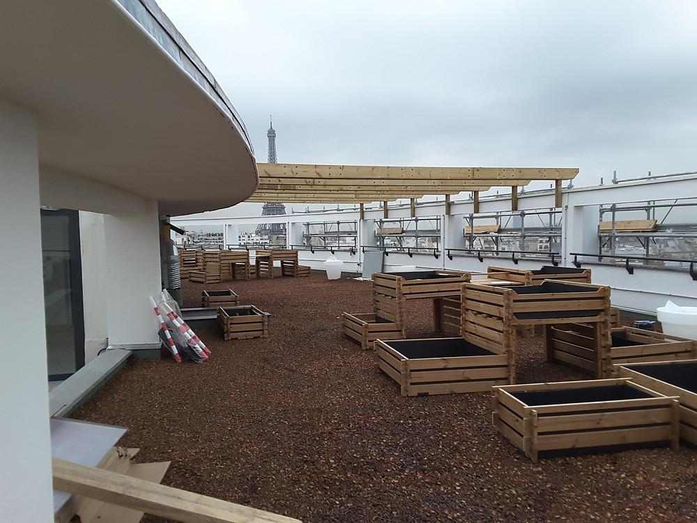 Possoz - OPH - rooftop garden