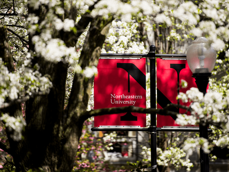 A Semester in Review: Spring 2020