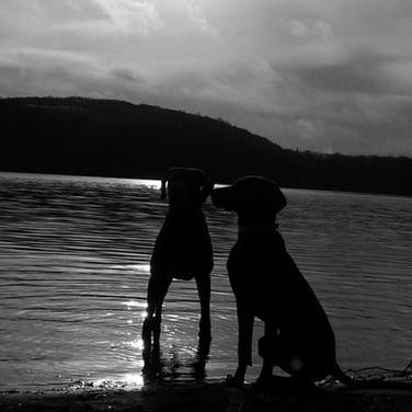 Nando und Amila am Waldsee