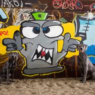 Amila und Nando Graffitti Quatsch
