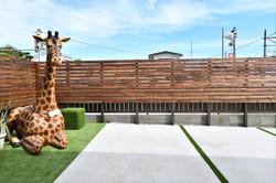 Our lovely giraffe