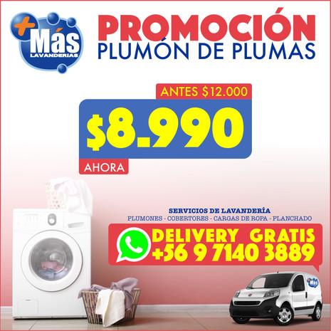 Flyer Plumas 18102020 Cuadrado.jpg