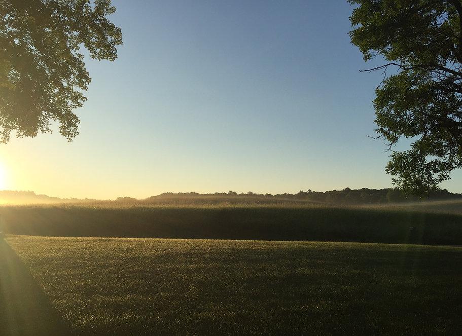 A misty morning bike ride