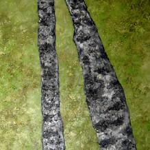 Jambes de bouleaux