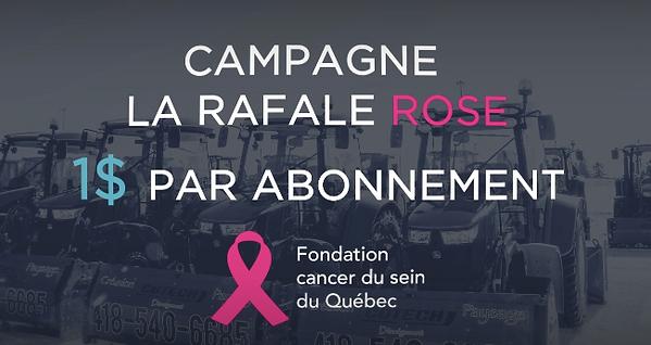 Rafale Rose.png