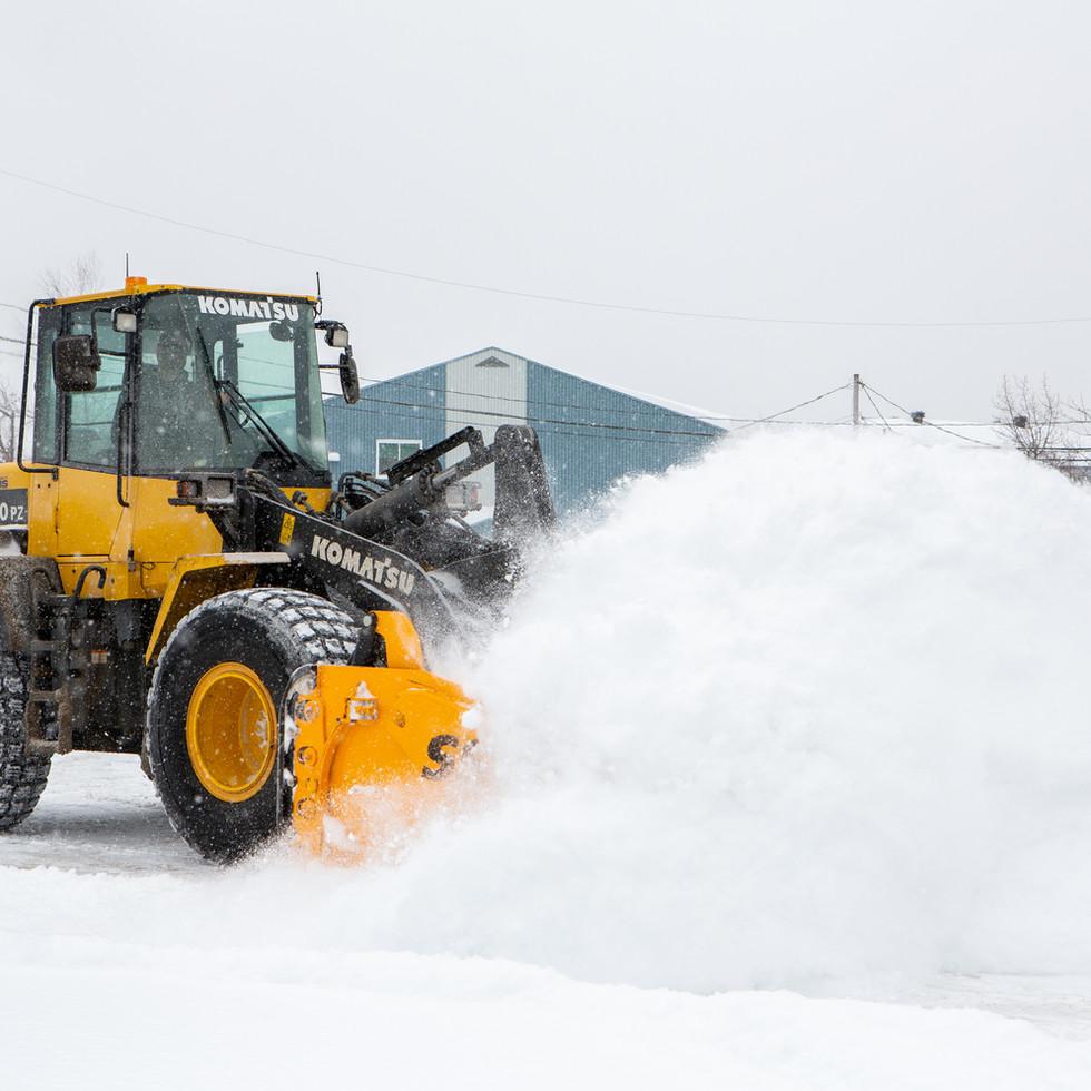 macphotographie.com-Polka-Onger neige201