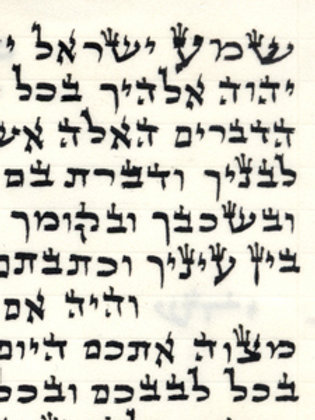 Mezuzah Scroll 12cm