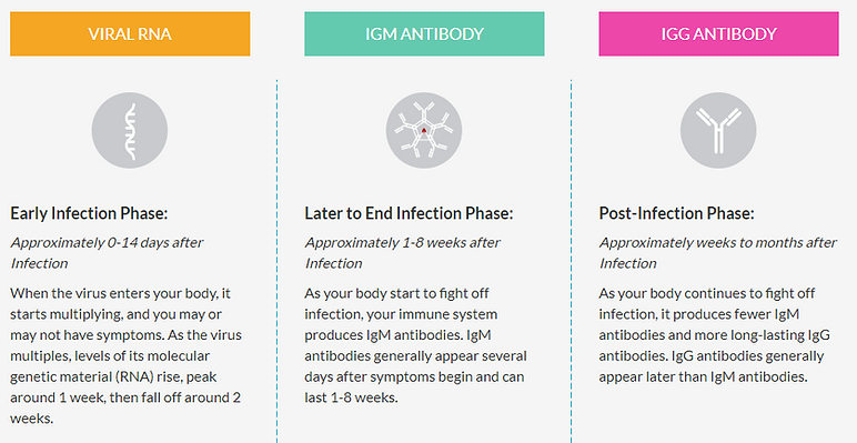 Viral RNA vs Antibody Testing.PNG
