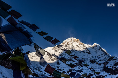 """Prayer Flags over Annapurna South"" Annapurna Base Camp, Nepal (2019)"
