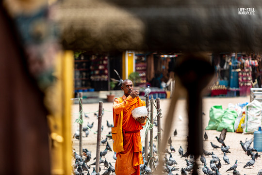 """Alms for the Monk"" Kathmandu, Nepal (2019)"