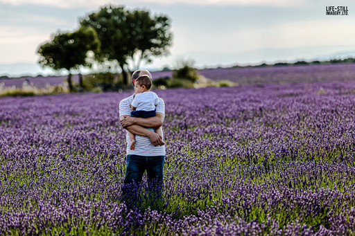 """Lavender Fields Forever"" Brihuega, Spain (2019)"