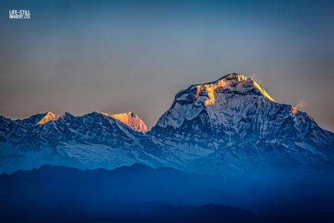 """Dhaulagiri Dawn"" Ghorepani, Nepal (2019)"