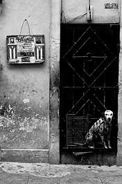 """Open the Cells"" Havana, Cuba (2006)"