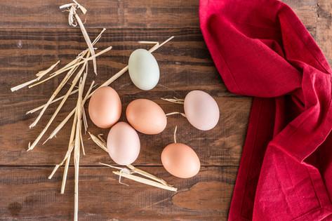 Eggs, Petaluma