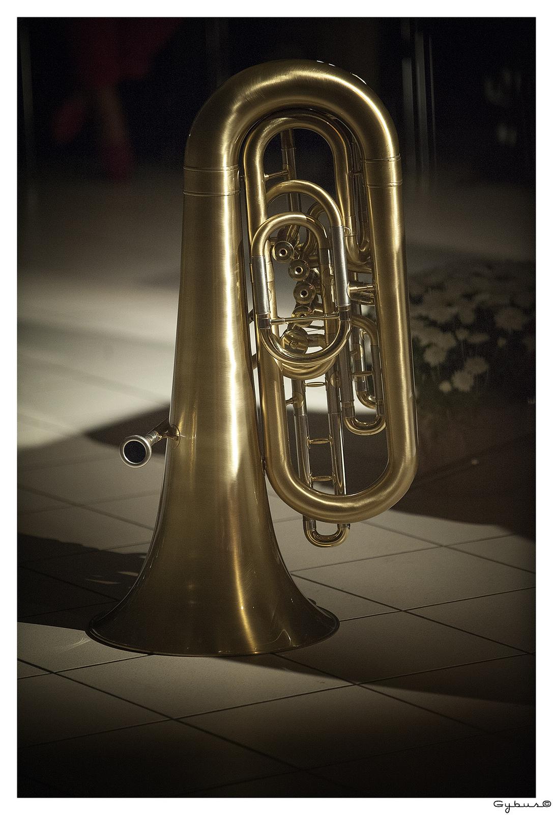 Tuba Yamaha Stéphane LABEYRIE.jpg