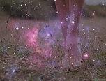 pieds herbe cosmos.jpg