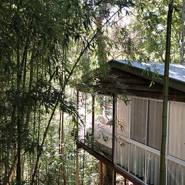 luxury treehouse kondalilla.jpg