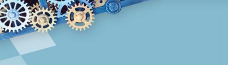 ERP Support   Index InfoTech