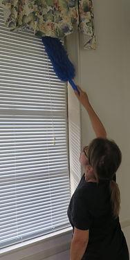 Rose dusts blinds.JPG