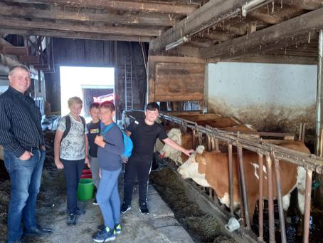 Ausflug zum Bauernhof Drucker