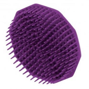 Detangle shampoo brush