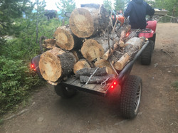 Fire Wood to Camp with trailer