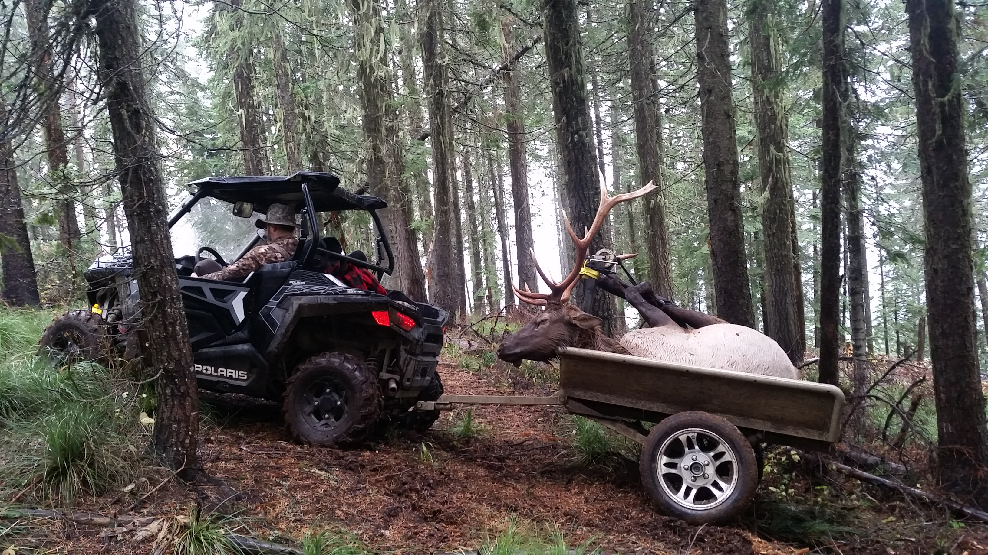 Elk retrieval with trailer